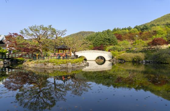 Geumgang Recreational Forest in Sejong. [BAEK JONG-HYUN]
