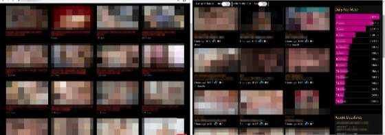 "Websites that specialize in switching K-pop stars' faces with women in pornographic videos using deepfake technology deal with these contents in particular. Famous and popular stars fall victim to these videos, and there is even a ""popularity meter"" on one of the sites (picture at right)."