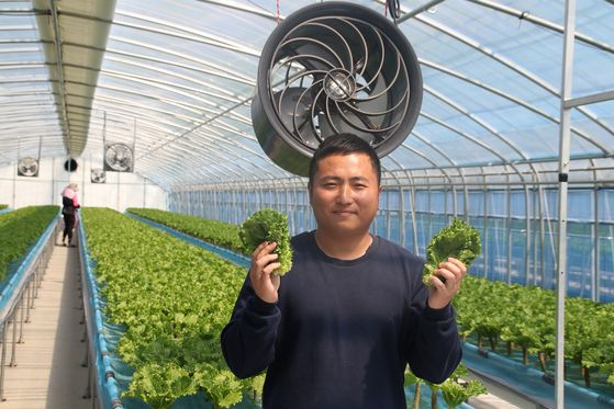 Gongjuae Cabbage CEO Choi Won-chang holds some cabbages. [RETURN2FARM]