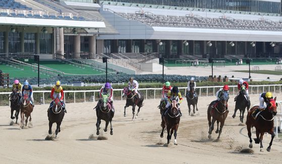 Horses race around the track in Gwacheong, Gyeonggi, on Sunday, four months after horse-racing was temporarily suspended because of the Covid-19 outbreak. Racing has now resumed, but without fans in the stands. [NEWS1]