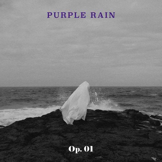 "Cover image of rock band Purple Rain's EP, ""Op.01."" [JTBC STUDIOS]"