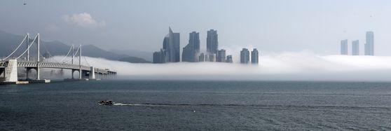 Skyscrapers in Haeundae District, Busan, are shrouded by sea fog on Tuesday. [SONG BONG-GEUN]