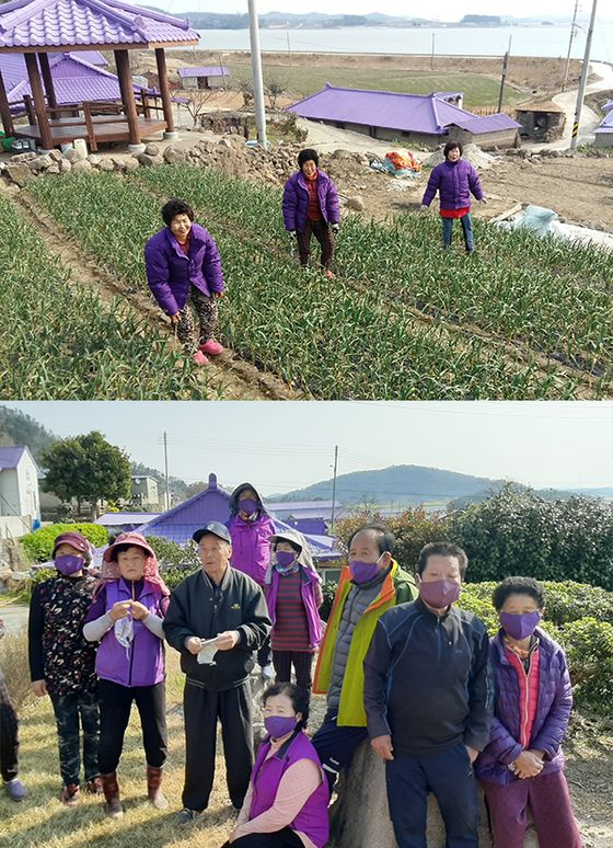 Some of the about 120 residents on the islands pose while wearing purple clothing. Recently they've even coordinated their face masks. [SINAN COUNTY]