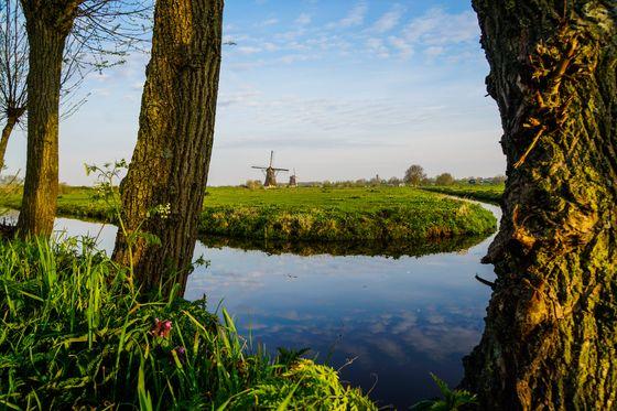 Kinderdijk [KINDERDIJK WORLD HERITAGE FOUNDATION]