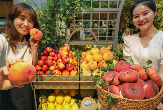 Employees at Hyundai Department Store in Pangyo, Gyeonggi, introduce baskets of seasonal fruit Wednesday, which will be offered before Daeseo, or the hottest day of summer according to the traditional Korean calendar. [HYUNDAI DEPARTMENT STORE]