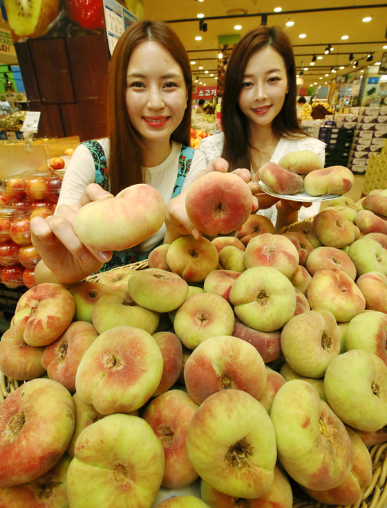 Models present flat peaches at Lotte Mart's Seoul Station branch in central Seoul, on Wednesday. Lotte Mart is holding a promotion for the first harvest of the donut-shaped peaches from Imsil County in North Jeolla, offering one box of five to eight peaches for 10,000 won ($8.50). [YONHAP]