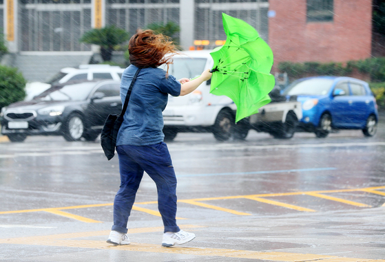 A woman in a street in Jeju on Wednesday morning struggles in the wind. [YONHAP]