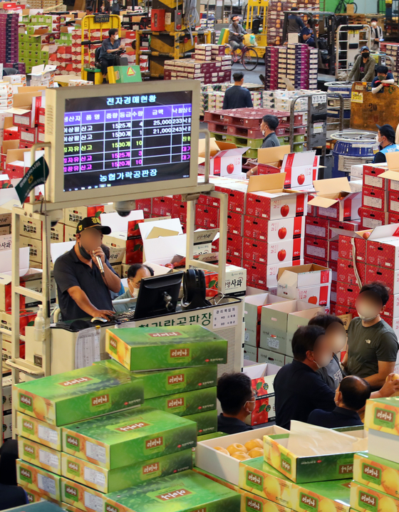 Boxes of fruits are put up for auction at the Garak-dong Agricultural & Marine Products Market in southern Seoul on Sept. 16 ahead of the Chuseok holidays. [YONHAP]
