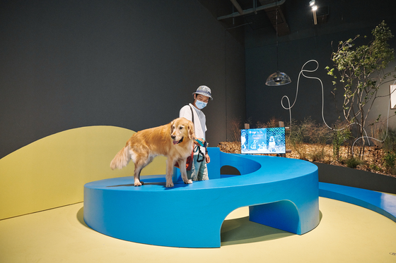 "A furniture piece designed by architect Kim Kyung-jae for dogs and their human companions at the ""A Museum for All, a Museum for Dogs"" exhibition at MMCA Seoul. [MMCA]"
