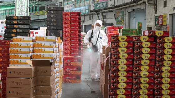 A worker disinfects the fruit section of an agricultural wholesale market in Daejeon Thursday morning. [NEWS1]