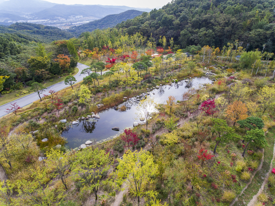 An aerial view of Forest Camp, the forest area next to popular theme park Everland in Gyeonggi. [EVERLAND]