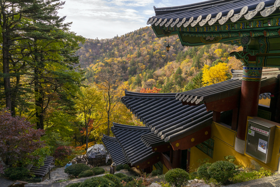 Sajaam, an annex temple of Sangwon Temple, is built on a slope to create a tier-like structure and is surrounded by vibrant autumn colors. [BAEK JONG-HYUN]