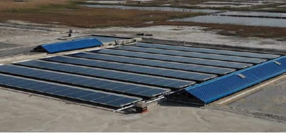 Kepco solar farm project developed with Green Energy Institute and SM Software. [KEPCO]