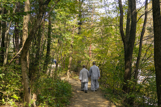 Buddhist monks walk Seonjae Trail that connects Sangwon and Woljeong temples. [BAEK JONG-HYUN]