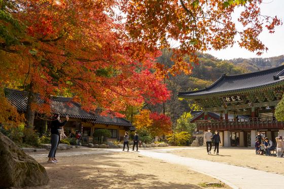Geumganglu in Woljeong Temple. [BAEK JONG-HYUN]