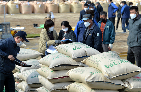 Farmers wait while examiners from the National Agricultural Products Quality Management Service on Thursday evaluate rice purchased for the public stockpile at the Daejeon Agricultural Technology Institute. [KIM SEONG-TAE]