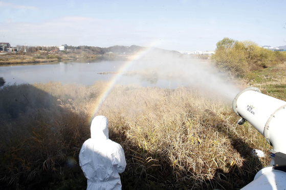 Officials from the Gwangju Buk District Office disinfect a wild bird sanctuary near the city's Yeongsan River Monday, after the highly pathogenic avian influenza H5N8 virus was detected on a duck farm in the nearby city of Jeongeup in North Jeolla. [YONHAP]