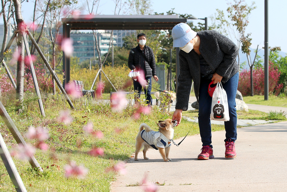 A dog owner walks her pet around a park in Seoul. [NEWS1]