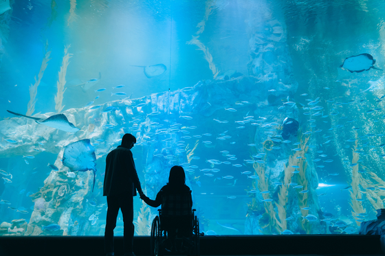 When Josee sees a beluga swimming towards them at the aquarium, she realizes that she needs to let Young-seok go. [WARNER BROS KOREA]