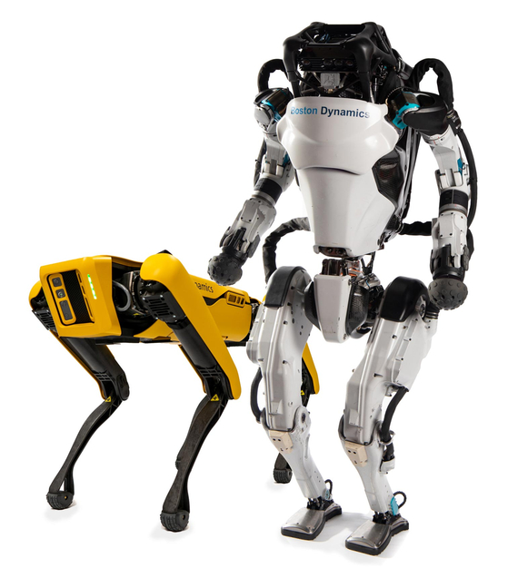 Spot, left, and two-legged robot named Atlas [[HYUNDAI MOTOR GROUP]