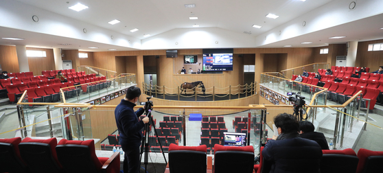 A horse auction by the Korea Thoroughbred Breeders Association (KTBA) in Jeju on Tuesday is conducted online due to Covid-19. The government on Tuesday raised the social distancing regulations limiting the number of people allowed to gathered to four. [YONHAP]
