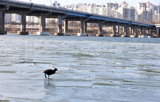 The surface of the Han River is frozen near Gwangnaru Park in Seoul as the weather agency issued a cold wave advisory for Seoul and Gyeonggi on Tuesday. The Korea Meteorological Administration forecast that it will get colder through Friday. Seoul expects minus 17 degrees Celsius (1.4 degrees Fahrenheit) temperatures on Friday morning. [YONHAP]