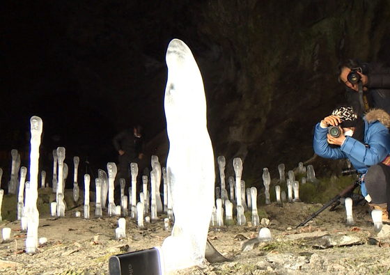Photographers take photos of icicles growing up from the ground in a cave in Jecheon, North Chungcheong, on Thursday. There are 100 such icicles in the cave. [YONHAP]