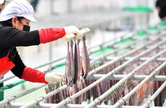 A villager from Hwacheon County in Gangwon dries trout on Sunday before they will be sold at a market. Efforts to sell trout, both online and offline, are being made after the annual Trout Festival was acnceled this year due to social distancing guidelines. [YONHAP]