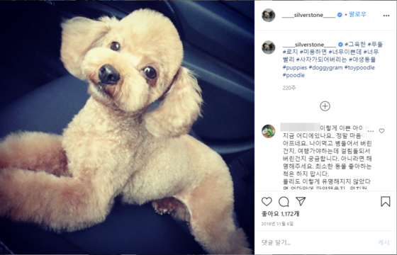 Netizens have been taking their doubts and anger to Park's Instagram, asking where his previous pets are now, including the toy poodle named Molly. [SCREEN CAPTURE]