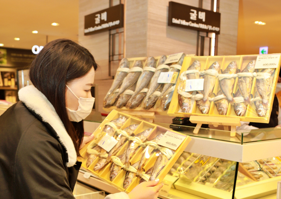 A model looks at a dried yellow corvina gift package at a Lotte Department Store branch. According to Lotte Department Store, sales of yellow corvina gift packages between Jan. 18 to Jan. 30 spiked 115 percent compared to the same period a year earlier. [LOTTE DEPARTMENT STORE]