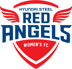 Incheon Hyundai Steel Red Angels