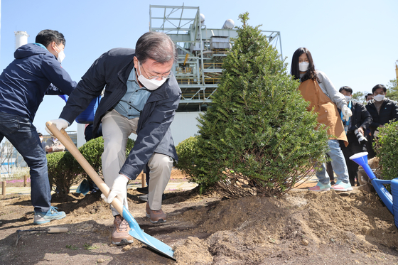 President Moon Jae-in on Monday plants a tree at the Seoul Power Station in Mapo District of western Seoul for an Arbor Day ceremony. [YONHAP]