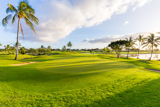 The green on the 14th hole at Kapolei Golf Club in Kapolei, Hawaii. [KAPOLEI GOLF CLUB]