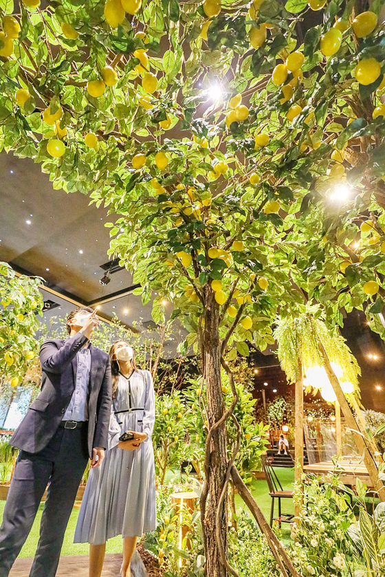 """Visitors to Pangyo Healing Park in Hyundai Department Store's Pangyo branch in Gyeonggi look at trees on Thursday. To celebrate the month of May, known as """"family month"""" in Korea, the department store has opened the park on its 10th floor. [YONHAP]"""