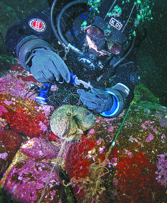 A diver cutting the net entrapping a type of cyclopteridae in the sea off the coast of Goseong County, Gangwon, in December 2020. [KIM HYE-JIN/TEAM BOOSTER]