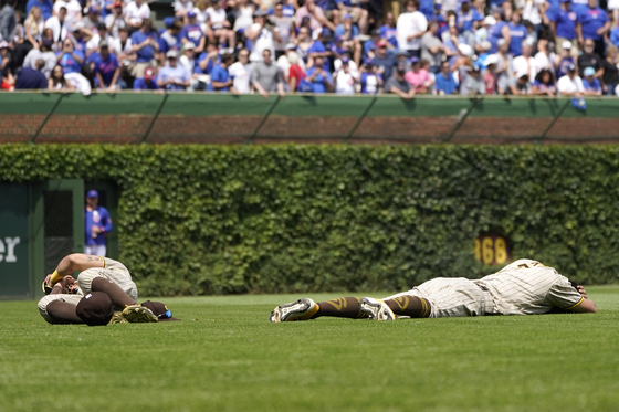 San Diego Padres' Tommy Pham, left, and Kim Ha-seong lay in left field after colliding going after a fly ball hit by Chicago Cubs' P.J. Higgins in the fourth inning of a game at Wrigley Field in Chicago on Wednesday. [AP/YONHAP]