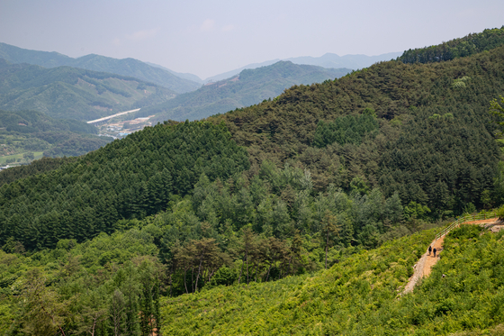 Mount Chiak's Dulle-gil opened last month. [CHOI SEUNG-PYO]