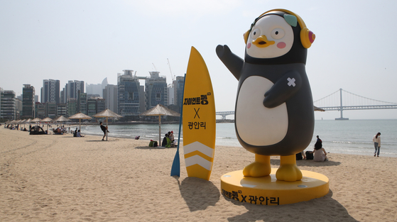 Pengsoo, the penguin, is back on the Gwangalli Beach in Busan with a mark on its arm that shows it has been vaccinated. [SONG BONG-GEUN]