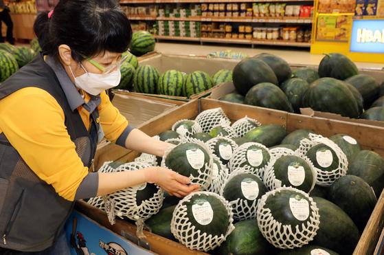 An employee displays apple watermelons at Emart's Seongsu branch in eastern Seoul. [EMART]