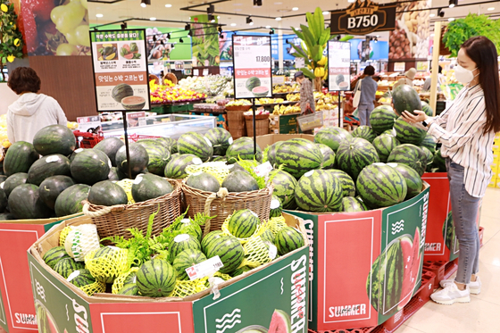 A visitor shops for watermelons at Lotte Mart's Seoul Station branch in central Seoul. [LOTTE MART]