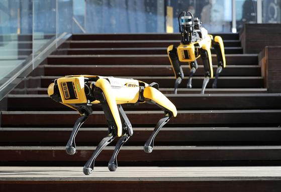 Boston Dynamics' Spot robots are demonstrated at Hyundai Motor Studio in Goyang, Gyeonggi in 2020. [NEWS1]