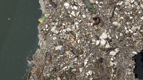 Marine debris including plastic waste collects in Gulpo Stream in Incheon. [WANG JUN-YEOL]