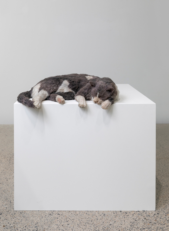 ″The thermals made me lazy, or The squatters (Smoky meet Monk's Deflated Sculpture II (2009))″ (2020) by Ryan Gander [SPACE K]