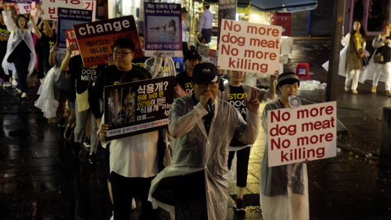 Animal rights activists have gone on street protests to prohibit consumption of dog meat in Korea. [JUST BRIGHT PRODUCTIONS]