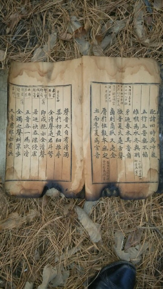 """Hunminjeongeum"" Haerye that Bae Ik-gi holds hostage of was partially destroyed in fire in 2015. [BAE IK-GI]"
