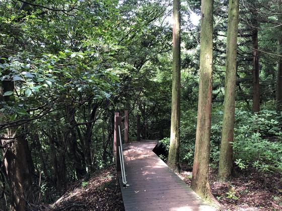 Geomunoreum walking trail [YIM SEUNG-HYE]