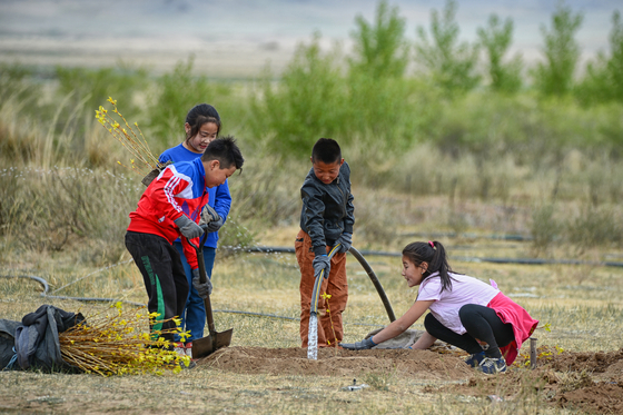 A group of children in Mongolia take part in planting trees in 2017 after a session with Korean experts. [KOREA FOREST SERVICE]