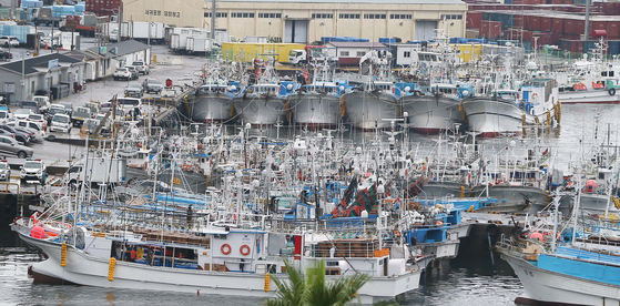 Fishing boats are docked at Seogwipo Port, Jeju Island on Sunday as fishermen provide for Typhoon Omais, which the Korea Meteorological Administration forecast will arrive near Jeju Island Monday afternoon. [YONHAP]
