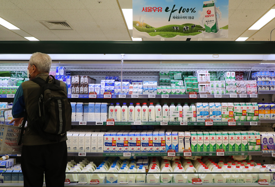 A customer looks at cartons of milk on the shelves of a discount store in Seoul Thursday. The Seoul Dairy Cooperative said Thursday that it will raise milk prices by an average 5.4 percent from the beginning of next month. With the country's top milk provider raising prices, competitors like Maeil Dairies and Namyang Dairy Products are likely to raise prices soon. [YONHAP]
