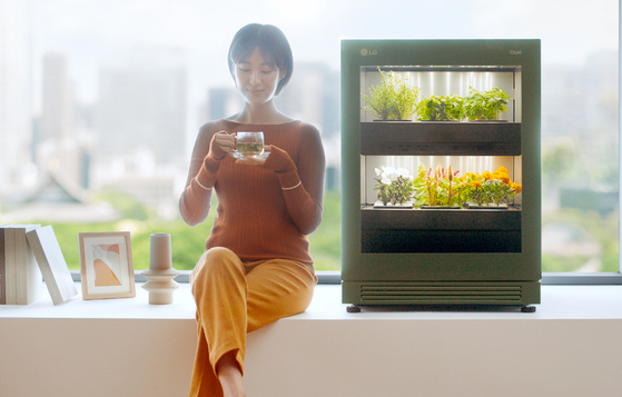 Flowers and vegetables are grown in the LG Tiiun, LG Electronics' indoors plant-growing device. [LG ELECTRONICS]
